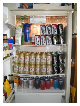 Pat and Fran's Trailer Trash Ripper - Unclassy Beer Fridge