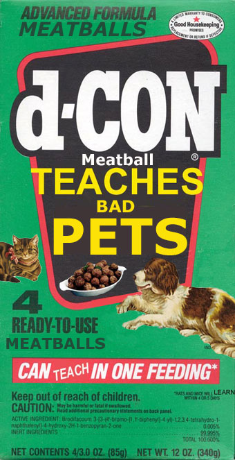 DCon Meatball - Teaches Bad Pets
